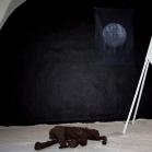 """Bakalauro baigiamasis darbas. Scena vaizduojanti mėnulio paviršių, """"kosmins laivas"""" suvirintas iš geležies, mamuto kūnas išlankstytas iš metalinio tinklelio ir apklijuotas durpėmis, tolumoje Žemės nuotrauka. 2011"""