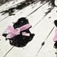 aliejus ant drobės, 85,5 x 124,5 cm, 2013