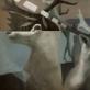 """iš serijos """"Paralelės"""" drobė, aliejus, 130x90cm. 2013 m."""