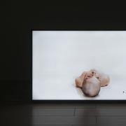 """Laura Sabaliauskaitė, """"Konfliktas"""", 2016, nuotr. A. Anksaičio"""