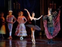 Baleto žvaigždžių iš Olandijos spindesys