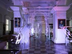 Fotoreportažas iš Vilniaus galerijų savaitgalio