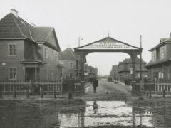 Susirūpinimas dėl Warburgo kolonijos likimo