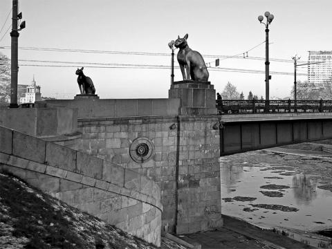 """Liudo Parulskio fotomanipuliacija Ernesto Parulskio komentarui """"Kačiukai gali laimėti"""" (meno projektas """"7 meno dienose""""). 2014 m."""