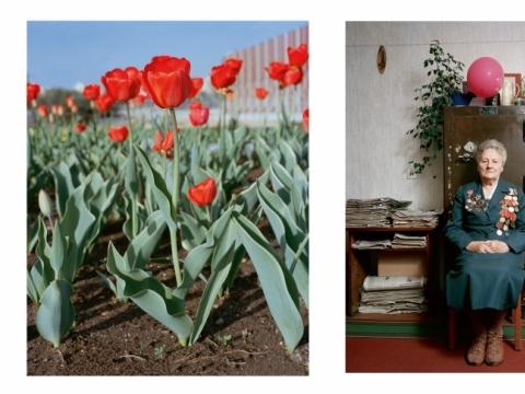 """Andrew Mikšys, atvartas iš knygos """"Tulips"""". 2016 m."""