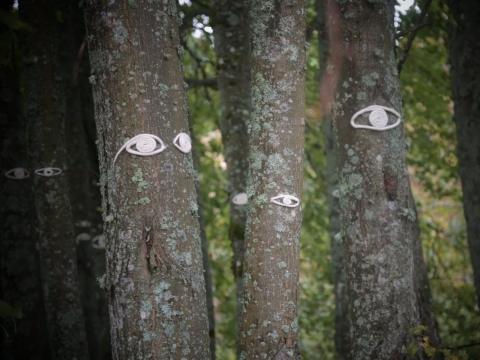 """Karolina Kunčinaitė, """"Žiūrėjimas miške"""". Ž. Višinsko nuotr."""