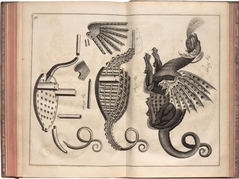 Puslapis iš K. Semenavičiaus knygos Didysis artilerijos menas. Iš J. Gumbio knygų kolekcijos. Fotografas A. Lukšėnas