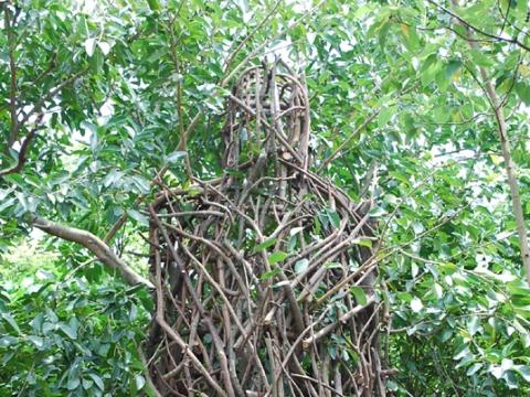 """Arvydas Ališanka. """"Šventykla"""". Guandu gamtos parkas, Taipėjus, Taivanis. 2010 m."""