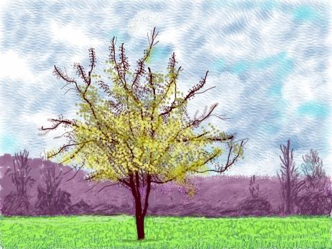 David Hockney, Nr. 88, 2020 m. kovo 3 d. iPad tapyba. © David Hockney