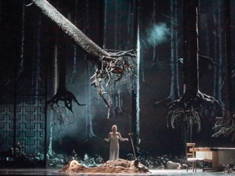 """""""Hercogo Mėlynbarzdžio pilis"""". """"Metropolitan opera"""" nuotr."""