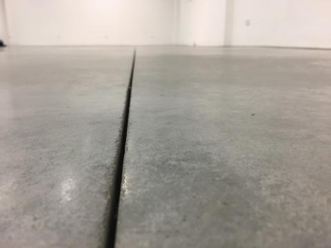 """Eglė Grėbliauskaitė, """"Kitos geros """"Titaniko"""" grindys"""". 2016 m."""