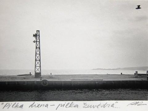 """Remigijus Pa�ėsa, """"Pilka diena – pilka žuvėdra"""". 1981 m."""