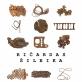 Ričardo Šileikos paroda - Autoriaus alibi arba kūrybinė tapatybė