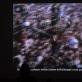 """Dan Graham, """"Rock My Religion"""" (""""Rokas – mano religija""""). 1983–1984 m. K. Rimkutės nuotr."""