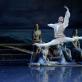 "Genadijus Žukovskis (Konradas) balete ""Korsaras"". M. Aleksos nuotr."