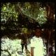 """Paulinos Pukytės parodos """"Mergaitės ir berniukai"""" fragmentas. """"Miške – """"Kodėl jūsų toks didelis maišas?"""". 2014 m. Marijos ir Jurgio Šlapelių namas-muziejus"""