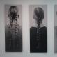 """Aistė Voverytė, """"Neužmirštuolės"""", instaliacijos fragmentas. 2014 m. A. Narušytės nuotr."""