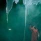 "Scena iš spektaklio ""Geocide"". J. Peixoto nuotr."