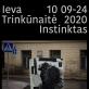 """Ievos Trinkūnaitės personalinė paroda """"Instinktas"""""""
