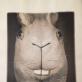 """Rimvydo Bartkaus kūrinys Naujosios komunikacijos mokyklos parodai """"Kiškis, morka, labirintas"""". 1991 m."""
