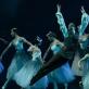 "Ernestas Barčaitis balete ""Žizel"". M. Aleksos nuotr."