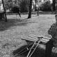 """Romualdas Požerskis, iš ciklo """"Paskutinieji namai"""", Laugaliai (1). 1987 m."""