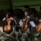 LVSO violončelininkai. J. Suslavičiūtės nuotr.