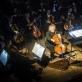 Mario Brunello, Modestas Pitrėnas ir Lietuvos nacionalinis simfoninis orkestras. D. Matvejevo nuotr.