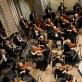 Georg Mark ir Lietuvos nacionalinis simfoninis orkestras. D. Labučio nuotr.