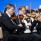 Vienos filharmonijos orkestras. D. Matvejevo nuotr.