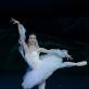 """Jade Longley balete """"Bajaderė. M. Aleksos nuotr."""