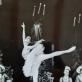 """Aušra Gineitytė balete """"Miegančioji gražuolė"""". A. Gineitytės asmeninio archyvo nuotr."""
