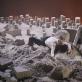 """Scena iš spektaklio """"Uniforma"""". G. Ferrando nuotr."""