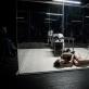 """Scena iš spektaklio """"Klamo karas"""". L. Vansevičienės nuotr."""