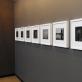 """Remigijus Treigys (galerija """"Baroti""""). J. Lapienio nuotr."""