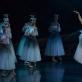 """Rūta Lataitė balete """"Žizel"""". M. Aleksos nuotr."""