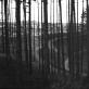 """Gedimino Pranckūno fotografijų paroda """"Pakraščiais. Peizažo likučiai"""""""