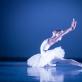 Rygos choreografijos mokyklos auklėtinė Polina Kopilova M.K. Čiurlionio menų mokyklos Baleto skyriaus Gala koncerte. T. Ivanausko nuotr.