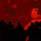 """Paroda """"Švytintys šešėliai"""", nuotr. A. Vasilenko, ŠMC archyvas"""