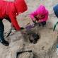 """""""Pajūrio akmens amžius"""". LNM archeologijos edukacinio užsiėmimo akimirka Palangoje"""