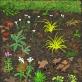 David Hockney, Nr. 186, 2020 m. balandžio 11 d. iPad tapyba. © David Hockney