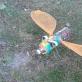 Ekologiniame plenere šiemet dominavo vabzdžiai. S. Valiulytės nuotr.