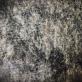"""Meilė Sposmanytė koliažas """"Europos peizažai III"""". 2010 m. Pienių pūkai, jūržolės, pelenai, plaukai, drobė, 85 x 85 cm"""