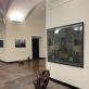 """Aurelijos Maknytės parodos """"Gamtos kabinetai"""" fragmentas. M. K. nuotr."""