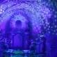 Koncerto Šv. Kotrynos bažnyčioje akimirka