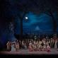 """Linksmoji našlė"". ""Metropolitan opera"" nuotr."
