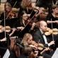Vilniaus kongresų rūmuose – iškalbingas šimtastygio orkestro susibūrimas