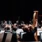 Gintaras Rinkevičius ir Lietuvos valstybinis simfoninis orkestras. G. Jauniškio nuotr.