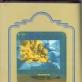 """Vitas Luckus, iš serijos """"Improvizuojant pantomimą"""". 1971–1973 m."""