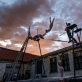 """Miss Dolly"". B. Tilmantaitės nuotr."